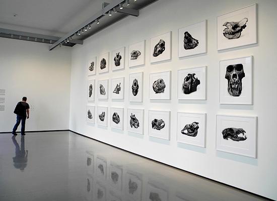 Fantastisk Irving Penn-udstilling i Venedig
